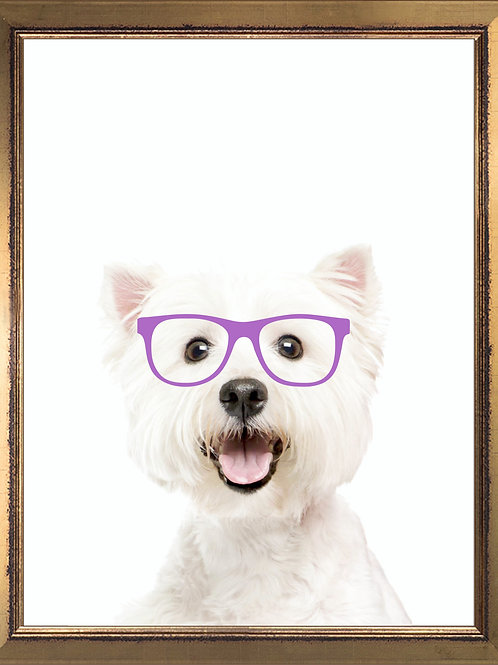 Westie Wearing Glasses