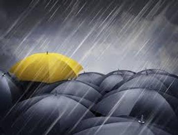rainyellow.jpg