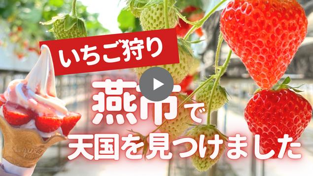 斉藤いちご園.png