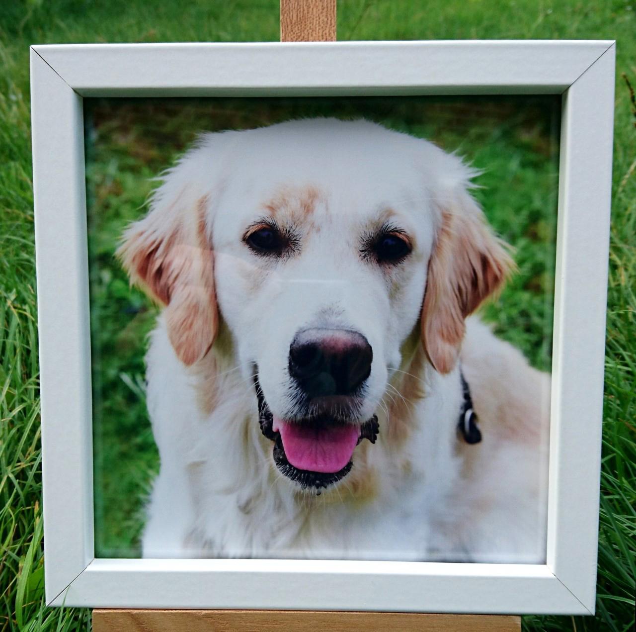 White Square Frame7x7 £18