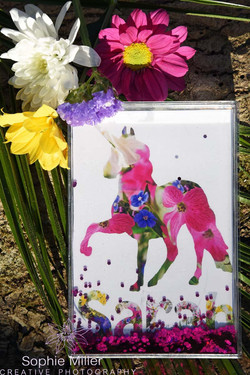 Unicorn Glitter Frame £15.00