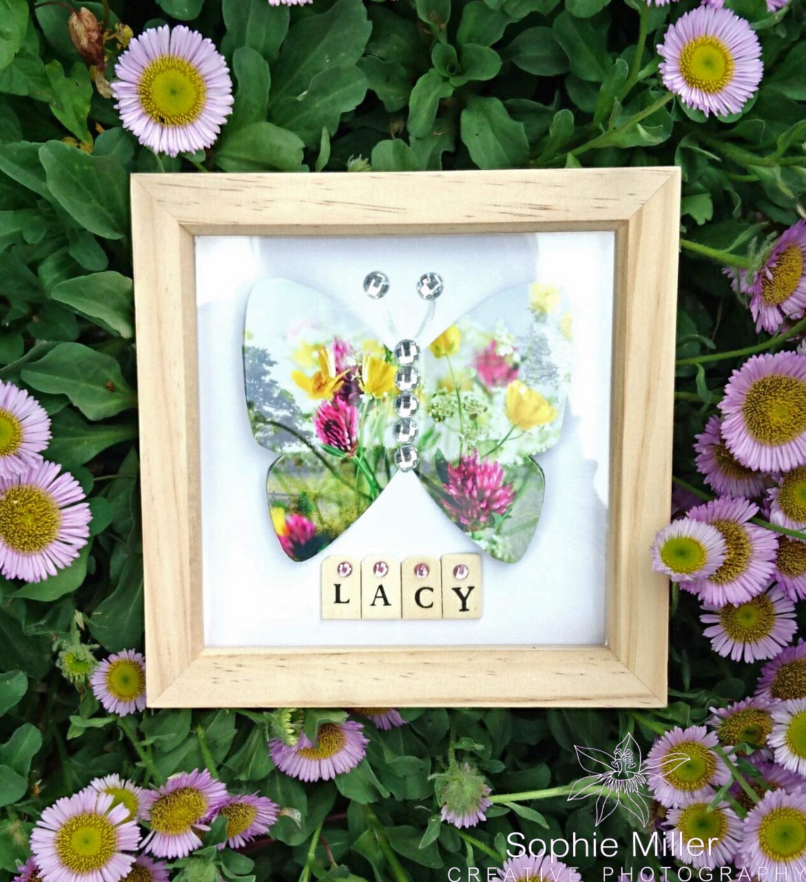 Butterfly Name Frame £9.50