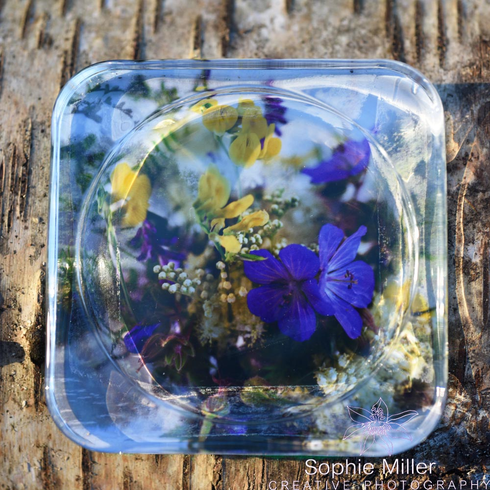 Wildflower Square Coaster £3.50