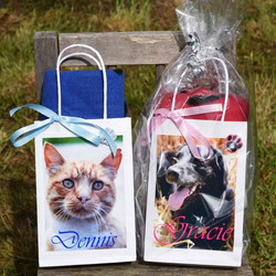 Pet Blanket Gift Bag £6.50