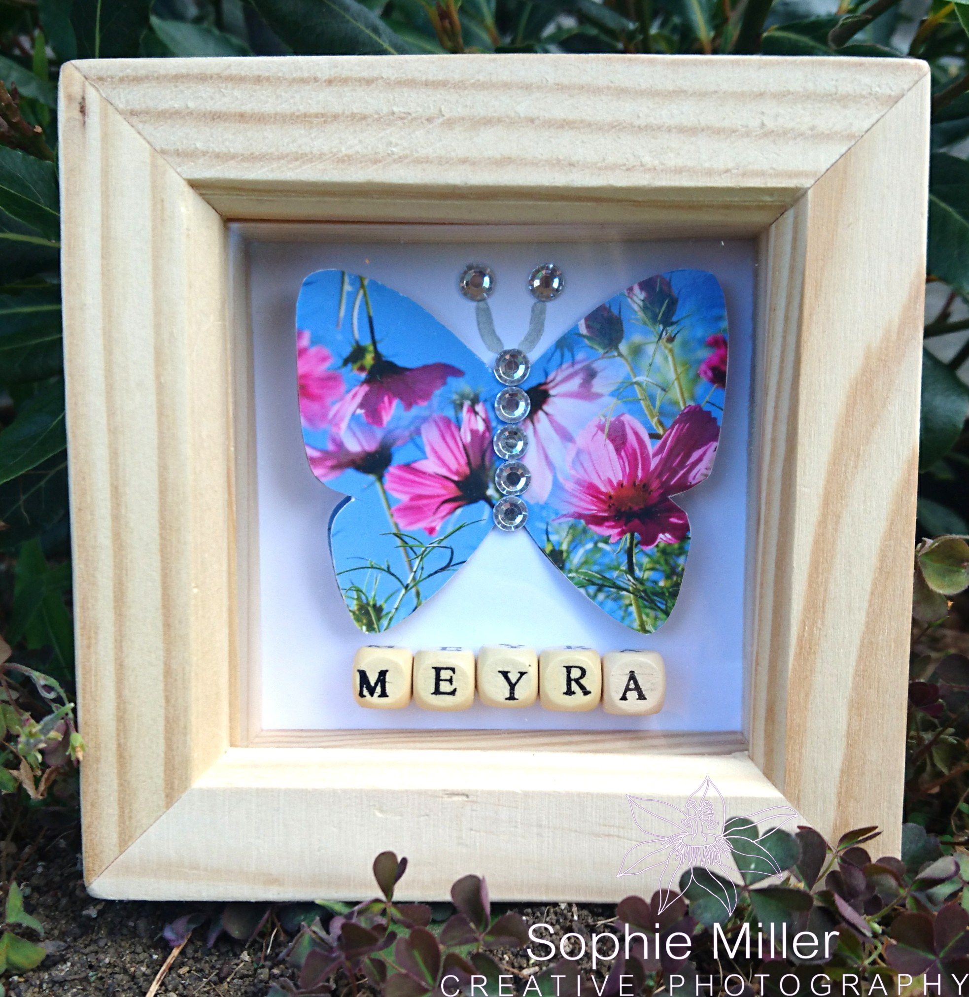Small Butterfly Frame £6.50