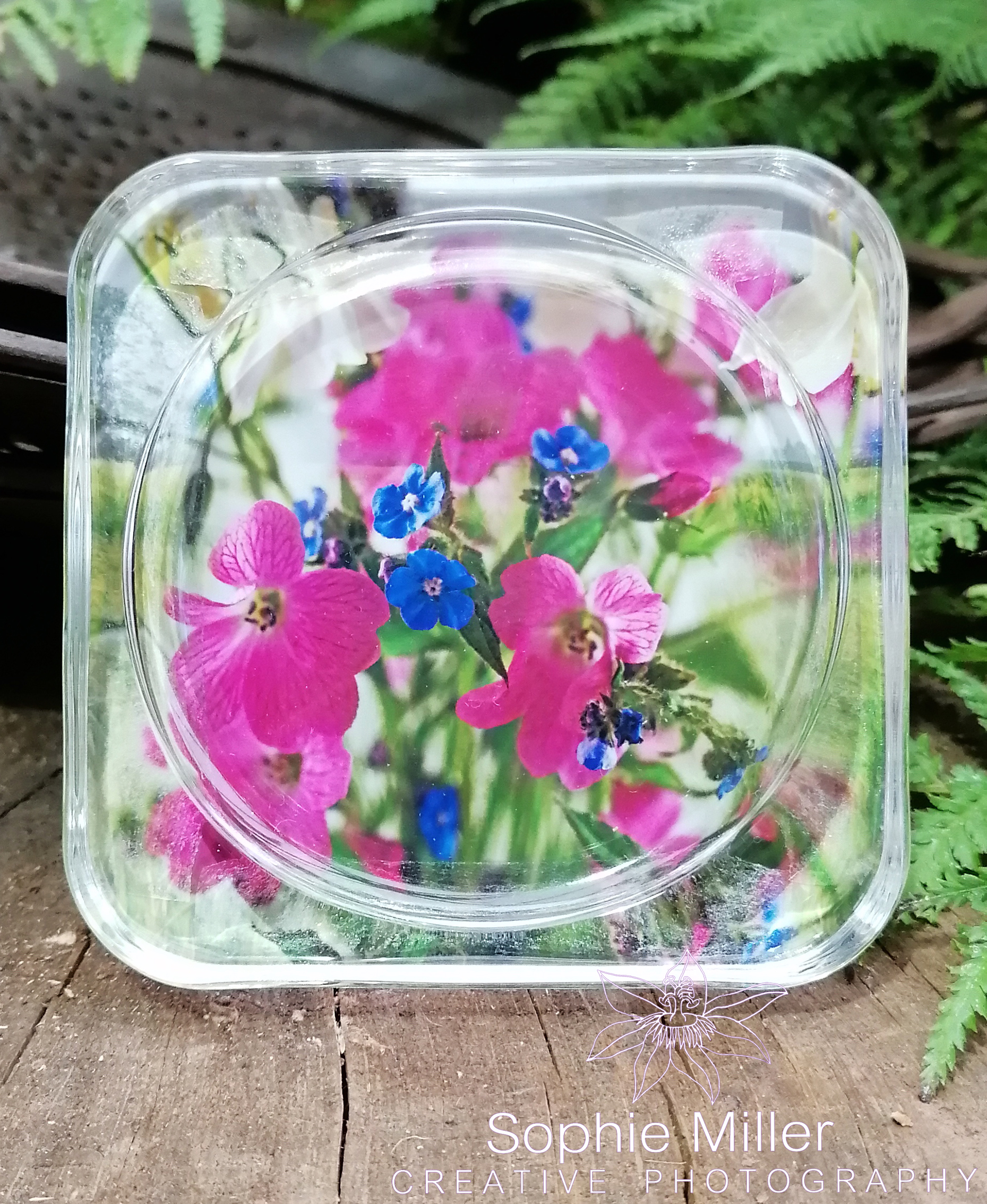 Pink Wildflower Coaster £3.50