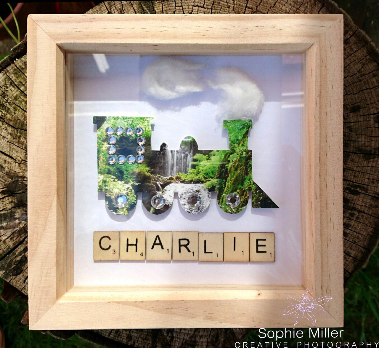 Train Name Frame £9.50