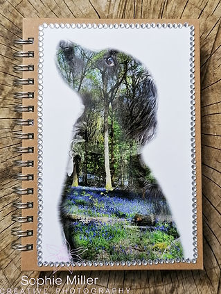 Notepad Sophie Miller Creative Photograp