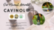 WEBSITE BANNER CAVINOL.png