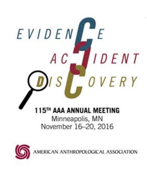 AAA Conference Minneapolis
