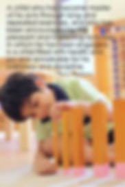 Montessori quote.jpg