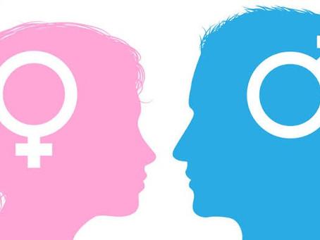 As Funções Masculinas E Femininas