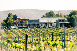 Dusty Hill Winery Wedding Venue Suns