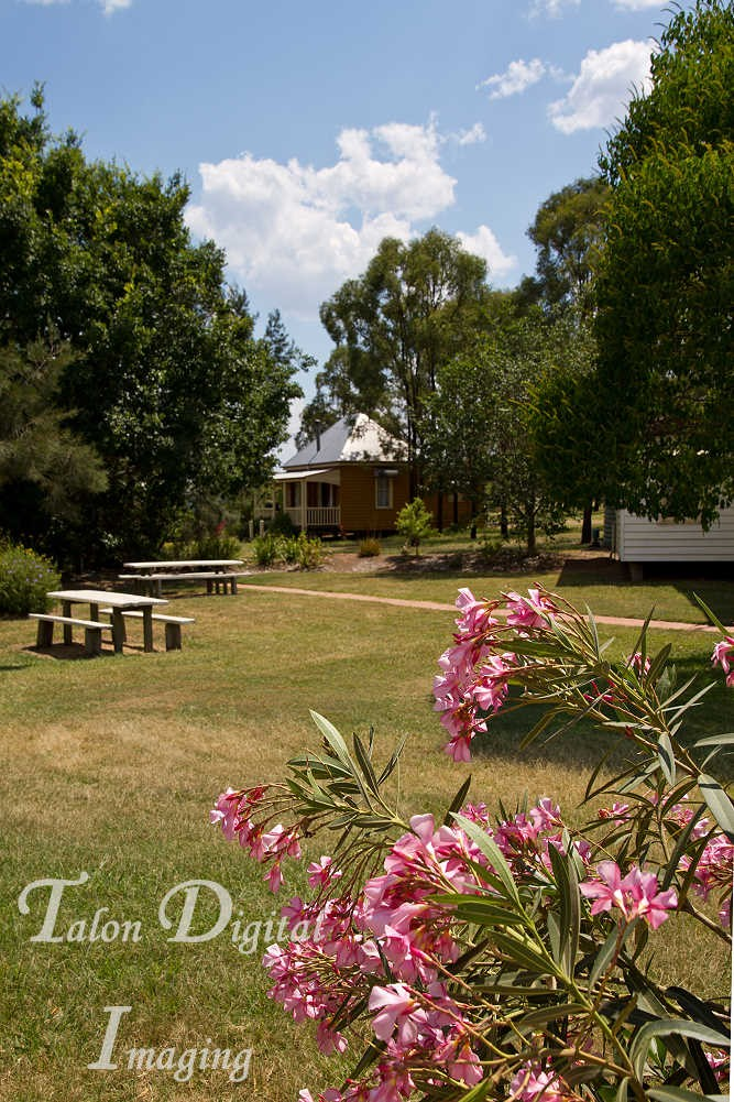 Dusty Hill Winery South Burnett 54