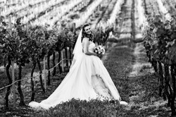 Dusty Hill Winery Wedding Venue Sunshine Coast