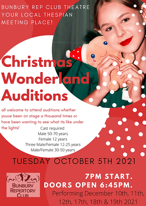 Christmas wonderland auditions.png