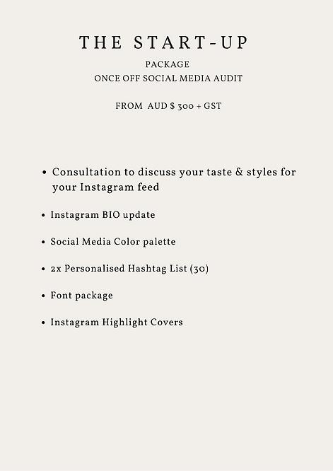 Start up Social media audit- Miami Digital