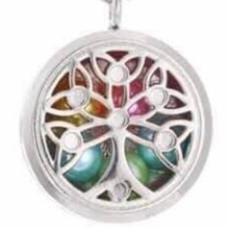 L13 Silver Plated Loop 2 Circular Locket