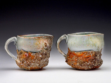 2010 mugs.JPG
