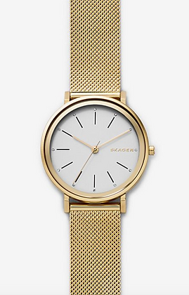 SKW2509 SKAGEN Hald Steel-Mesh Watch