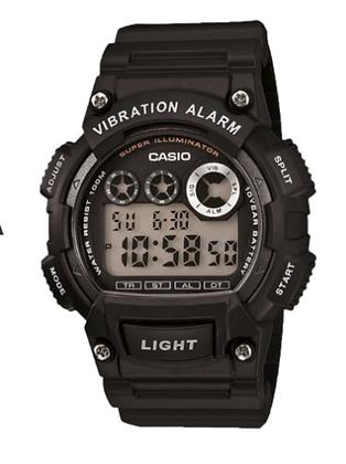 W735H-1A Casio Vibration Alarm