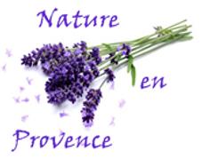 Nature en provence.PNG