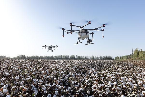 agriculture-4208863.jpg