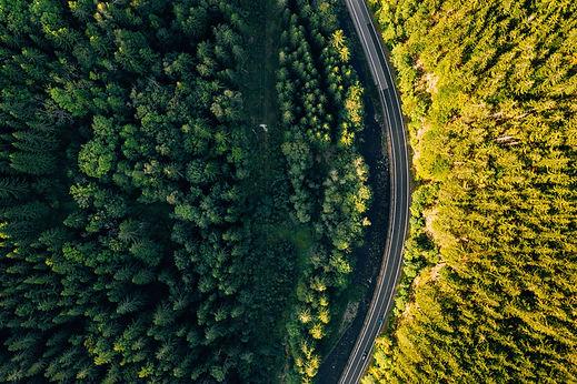 road-4564817.jpg