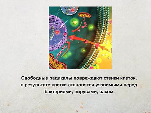 5a071eb08368587f43f5fc65181066cd-15.jpg