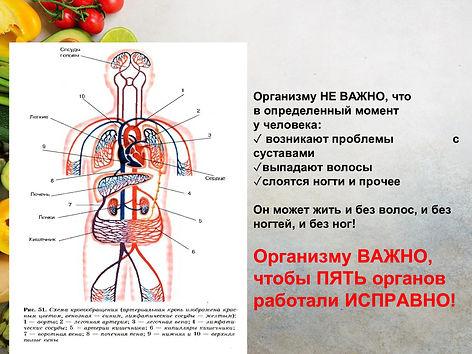 71758e2920c5ce7ed6276f4e79cc33a1-9.jpg