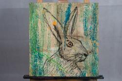The Austrian Rabbit