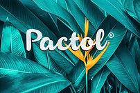 pactol logo.jpg