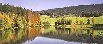 bayerischer_wald_S.jpg