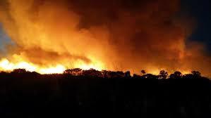 Usina relata prejuízos causados por incêndios ao Meio Ambiente, à saúde e à colheita