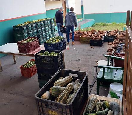 Projeto 'Cesta Verde' entrega alimentos para famílias de Santa Adélia em situação de vulnerabilidade