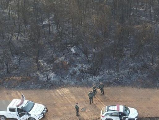 Usina é multada em R$ 4,6 milhões por incêndio em 35 propriedades da região