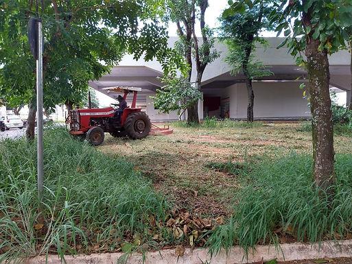 Prefeitura notifica proprietários para limpeza de terrenos baldios