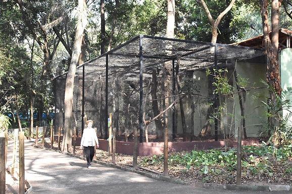Zoológico de Catanduva participa de programação online de férias com mais de 20 instituições