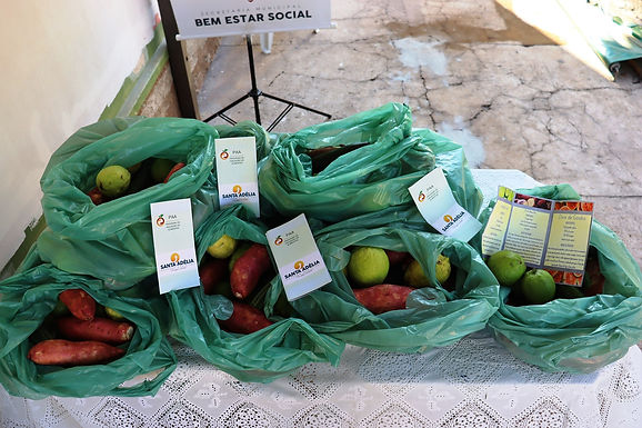 Projeto Cesta Verde distribui mais de 17 mil quilos de alimentos a moradores de Santa Adélia