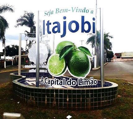 Câmara dos Deputados analisa projeto de lei que concede título de Capital Nacional do Limão a Itajobi