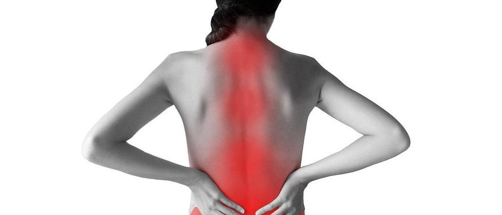 Prévention des risques du dos (1 jour)