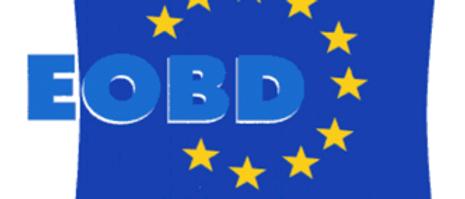 Information technique - de l'EOBD à Internet (1 jour)