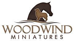 Rachel Williams Logo 2 Brown Leather.png