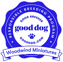 woodwind-miniatures-badge.png