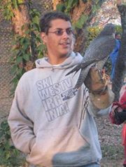 Renato with the Peregrine Falcon described as a 'sweet' young bird.