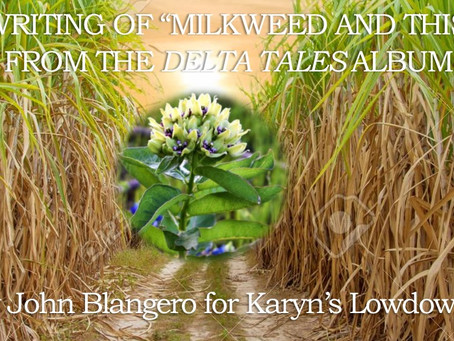 """The Writing of """"Milkweed and Thistle"""""""