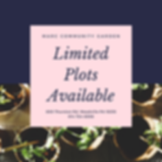 Limited Plots Available.png