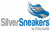 silver sneakers picture.jpg
