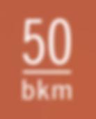 bkm logo.png