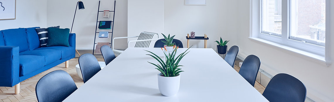 White table with 2 plants in the centre of a bright conference room with 7 chairs around it and blue sofa on the left